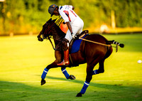 Season-2015 The London Polo Club