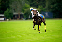 "2015 ""The London Polo Club"", ""HPC-""Stagshead vs Los Hillerios"""