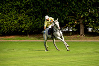 "2015 ""The London Polo Club"", ""HPC"", ""The First Round Billy Walsh Tournament "",""Foxtrot Whisky vs Greenforde Farm"","