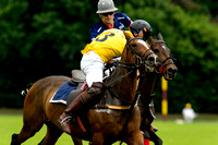 "2016 "",""The London Polo Club"" , ""Dogs Trust Charity Match"",""Quadriga"","" Dogs Trust"","