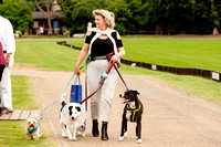 "2016 "",""The London Polo Club"" , ""Dogs Trust Dog Show.""'"