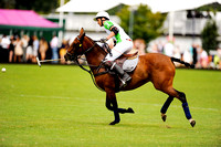 "2016. "" The Inner Circle, Summer Polo Cup"",""Cactus Water"","" La Martina"" ."